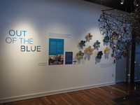 Out of the Blue, Seaside Museum