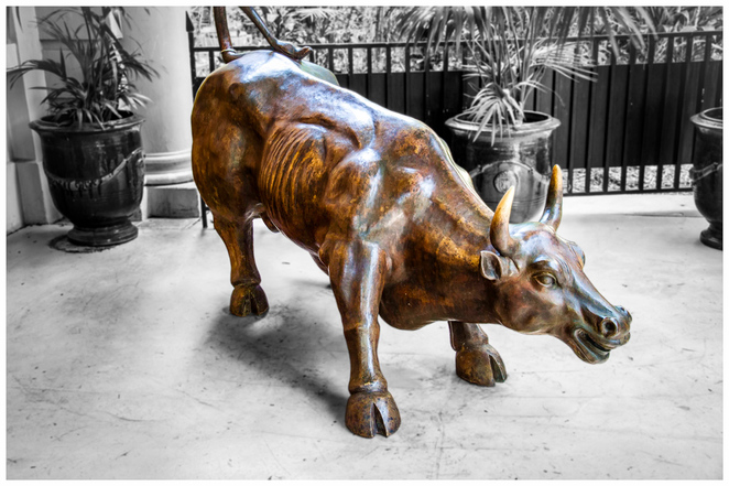 Stamford hotel, wedding expo, bull sculpture, statue, may cross