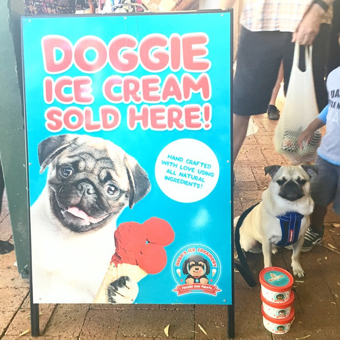 treats, dog treats, dog friendly, brisbane, small business, hugos ice creamery, doggie tea, barkballs, protein balls, beerdogs bitter, paw blonde, pure blonde, dog beer, miss drews dog bakery, melbourne, cafe pawridge, suburban pup, homemade, healthy, hound hutt, pets
