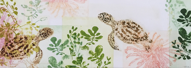 Trudy Rice, turtles, solarplate, printmaking, photopolymer etching, Global Oceans, art, Hahndorf Academy