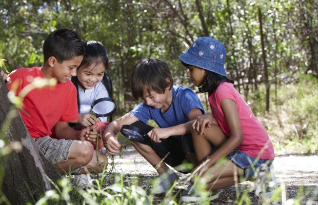 BioQuest, Junior Ranger, parks victoria, magnifying glass, explore, insects, spiders