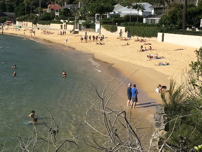 Camp Cove Watsons Bay Beach walks