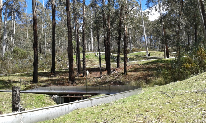 corin forest, school holiday activities, canberra, family friendly, things to do,