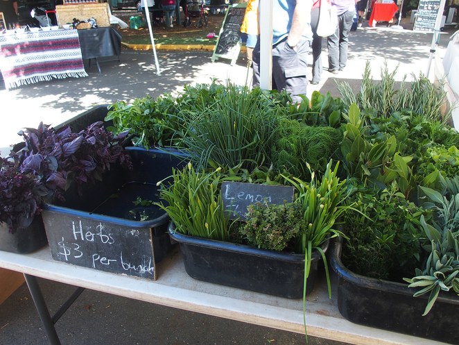 Fairfield Farmers Market, Organic, Vegetables, Fresh, Food, Herbs