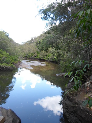 crosslands reserve, great north walk, place of winds, interpretive trail, benowie walking track, berowra creek, berowra valley national park, calna creek