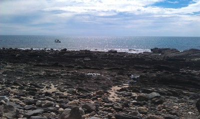 hallett cove, conservation park, beach, fishing, snorkelling