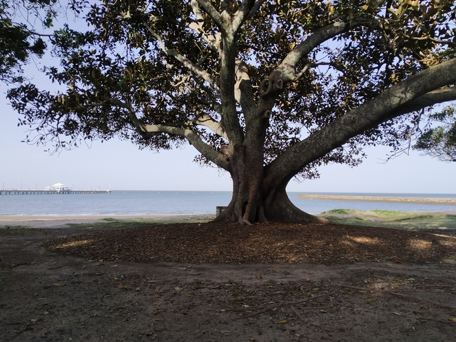 Shorncliffe