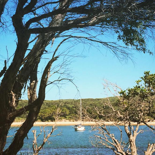 jibbon, loop, track, trail, walk, royal national park, port hacking, bundeena, beach