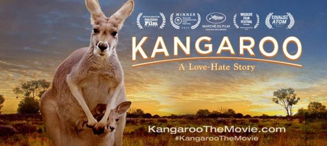 Kangaroo: A Love Hate story