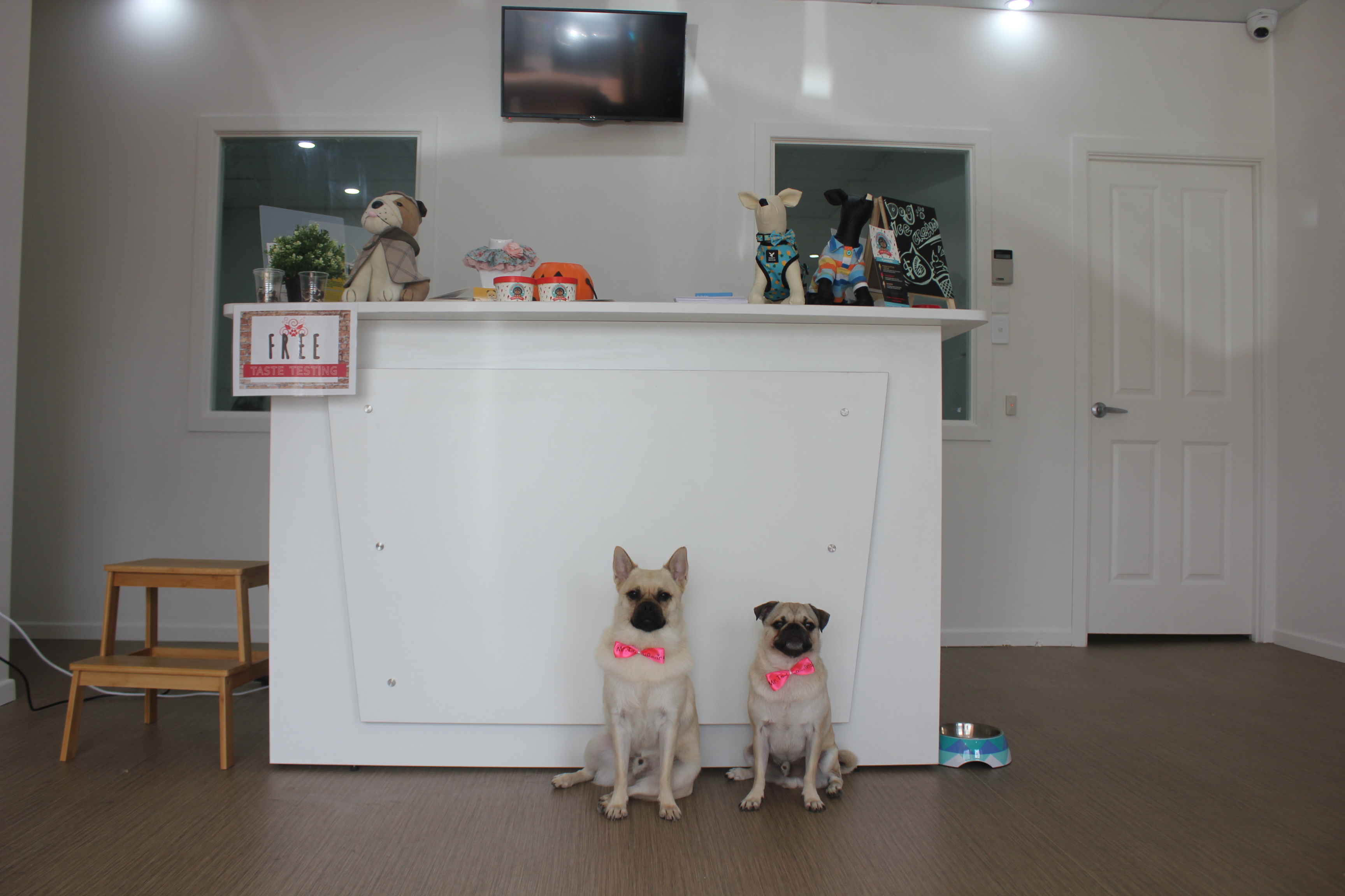 Dog Grooming Brisbane Northern Suburbs
