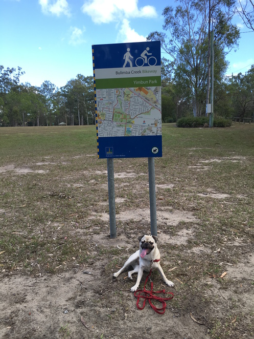 park, dog park, dog, dog friendly, yimbun park, sunnybank, macgregor, brisbane, southside, free, children, fun, playground