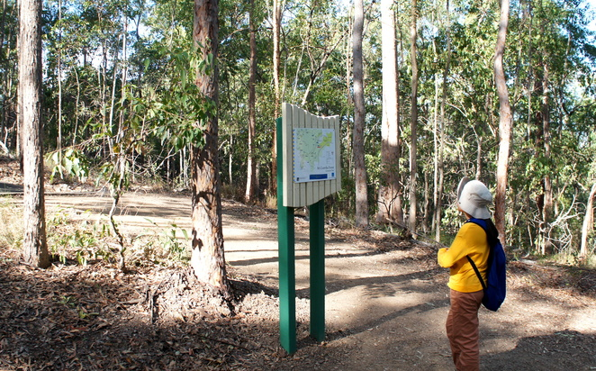Checking out a sign describing the new trails up Mt Coot-tha