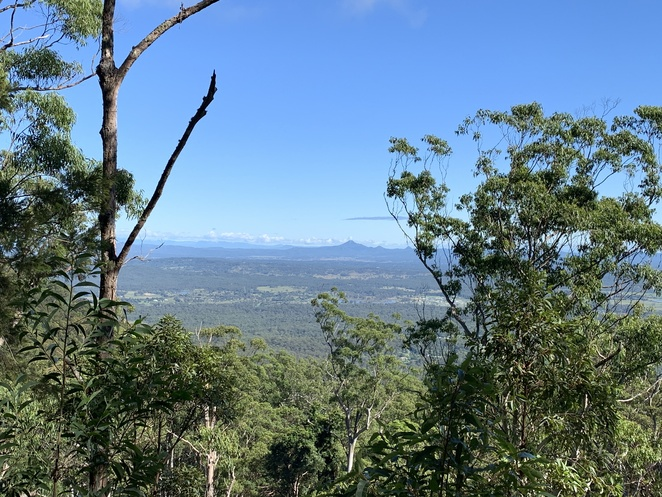 The Knoll Section, Sandy Creek Circuit, Cameron Falls, Lookout at the Knoll carpark, Witches Falls Circuit Hike in Tamborine Mountain, Queensland, Witches Chase Trail, Tamborine Mountain, Palm Grove section Hike, The knoll Section Hike, Joalah Section Hike, Spice of Life Café in Tamborine,