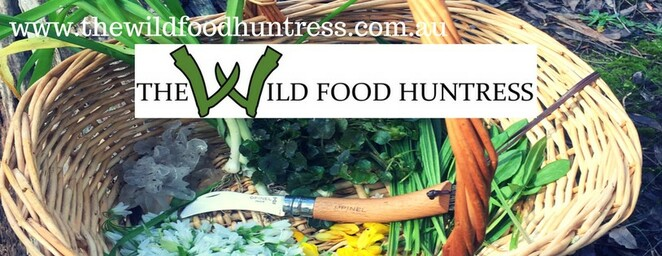 The Wild Food Huntress, A Foragers Feast, Foraging
