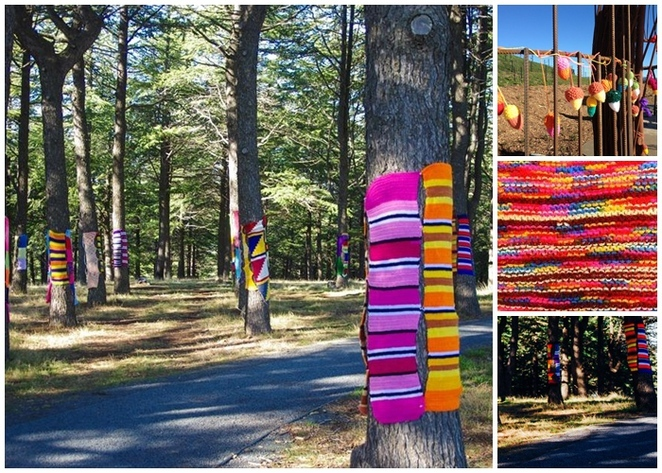 warm trees, national arboretum, winter, kids, kids activities, july, drop in knitting, pod playground, 2018, events,