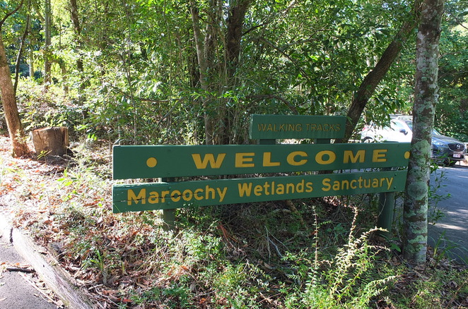 Agents of Discovery, Wetlands Mission, digital game, school holidays, GPS technology, self-guided, Maroochy Wetlands Sanctuary, Bli Bli, educational, fun, download free app, ten challenges, social distance, mosquito repellant, protective clothing, get ready, get set, to get out to play