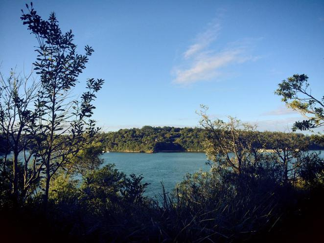 cremorne, point, reserve, walks, circuit, robertson's point, mosman, taronga zoo