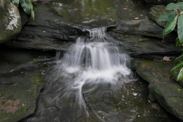 E.G. Waterhouse Waterfall
