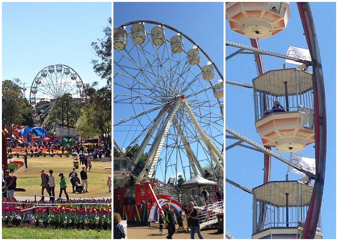 ferris wheel, floriade, canberra, september, october, 2018, 2019, 2020, ACT, things to do, view from the ferris wheel, children, kids, views, commonwealth park,