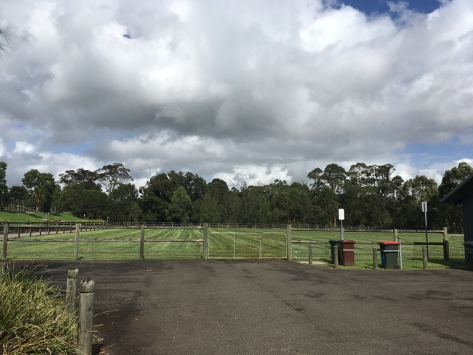 galston rural sports facility, galston horse riding, hills district horse riding