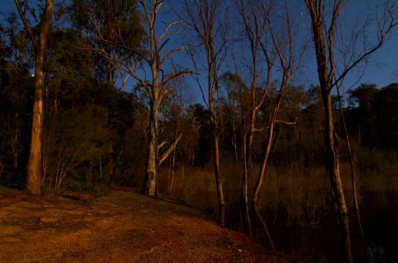 Glamping with nature Lake Eildon Parks Victoria
