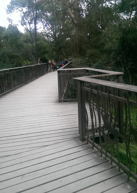 Healesville Sanctuary's Serene Walkways