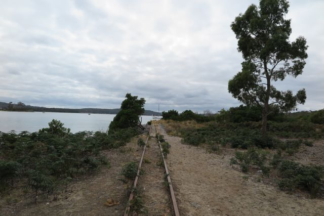 Ida Bay Train Tracks
