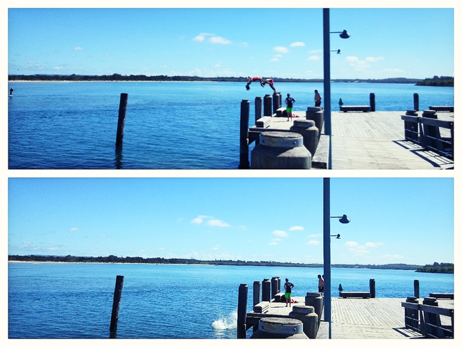 Jetty diving at Port Macquarie