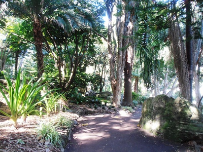 A shady path at the John Oldham Park.