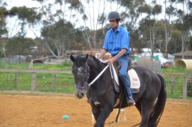 Lower Lakes stockman's challenge, Strathalbyn