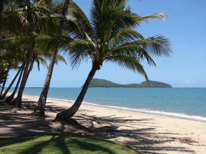 luxury apartments palm cove