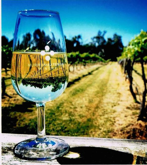 murrumbateman winery, canberra, wineries, ACT, seniors,