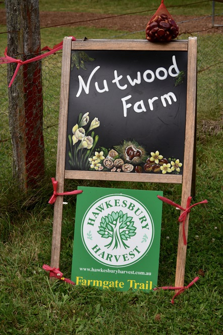 Nutwood Farm, pick your own, chestnuts, walnuts, Mt Irvine, Blue Mountains, Day trips