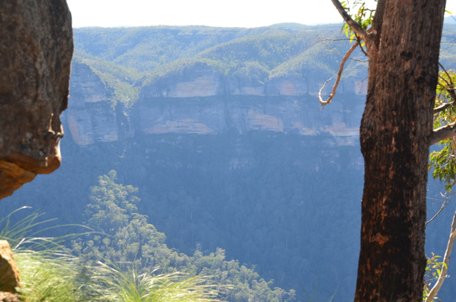 perry's lookdown, perry's lookdown campground, blackheath, blue mountains, camping, free, walks, views
