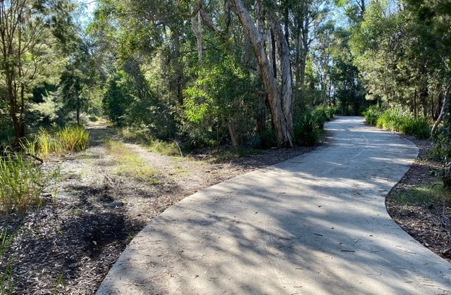 One of the deviations from the paved Moreton Bay Cycleway into the Pinklands Bushland Reserve