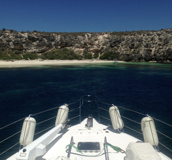 Rottnest island, wa, perth, day trips, snorkelling, Rotto, diving, reef, beaches, best Perth, quokkas