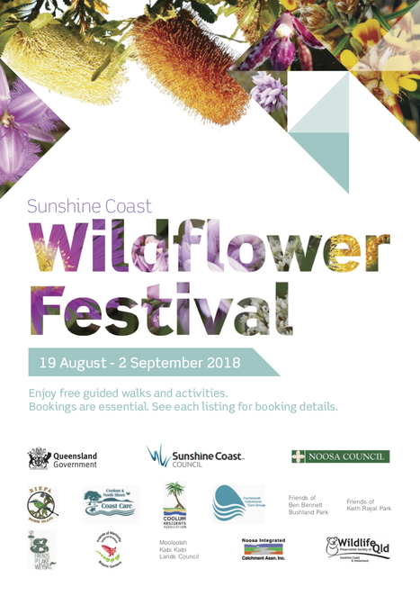 Sunshine Coast Wildflower Festival, 19 August to 2 September, FREE guided walks, Ben Bennett Park, Walk on Salt Water Country, Mooloolah River National Park Walk, Marcus High Dunes and Lake Weyba Wildflower Walk, Weyba Nature Refuge Biodiversity Walk, Friends of Lake Weyba, Explore Maroochy Regional Bushland Botanic Garden, Mountain Creek Conservation Area Walk, Noosa National Park Wildflower Park, Keith Royal Park Wildflowers, Girraween Nature Refuge Guided Walk, happy walking, wildflower lovers