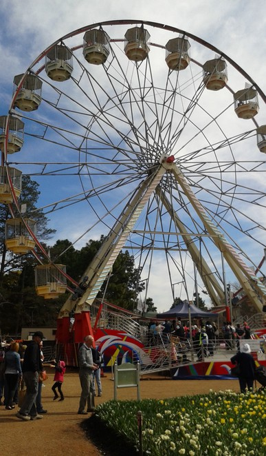 ACT Family and Community Day 2015, Canberra, things to do