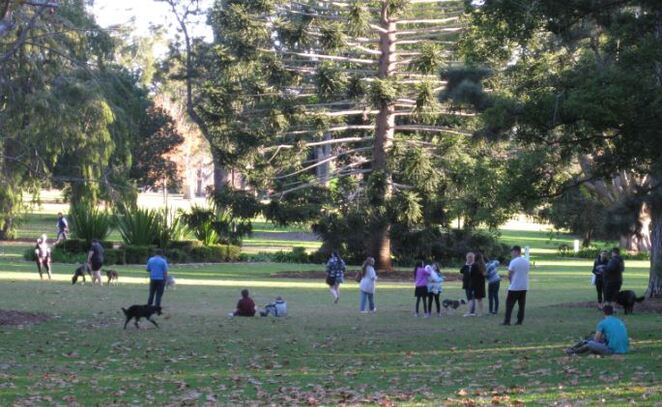 Dog off-leash area Queens Park Toowoomba