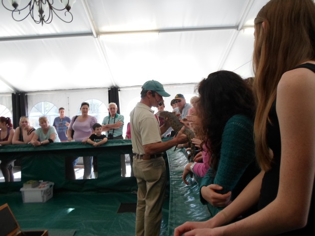 dolphin marine magic coffs harbour steve mcewan reptile show
