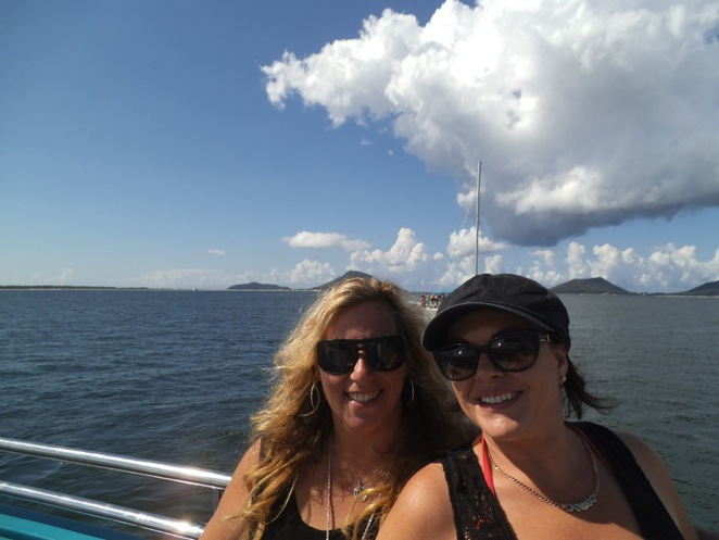 dolphin watching cruise, dolphins, Port Stephens, Nelson Bay