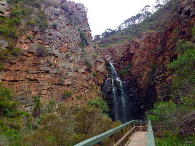 morialta falls things you didn't know conservation park south australia adelaide hiking rock climbing history facts interesting fun