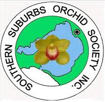 southern suburbs orchid society, annual orchid spring show, n g wishart senior citizens hall, moorabbin, refreshments, community event, fun things to do, garden lovers, green thumb, exotic orchids, orchid q&a, raffle, flowering orchids, orchid accessories, prizes, flowers, blooms
