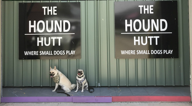 the hound hutt, doggy day care, pet boarding, kennel, dog friendly, suburban pup, discuits, dog treats, pet shop, pet boutique, northside, stafford, northern suburbs, brisbane