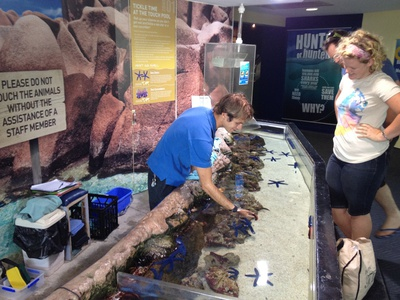 Touch and tell is one of the first exhibits you will come across at UnderWater World