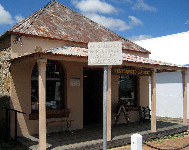 The famous Tenterfield Saddler