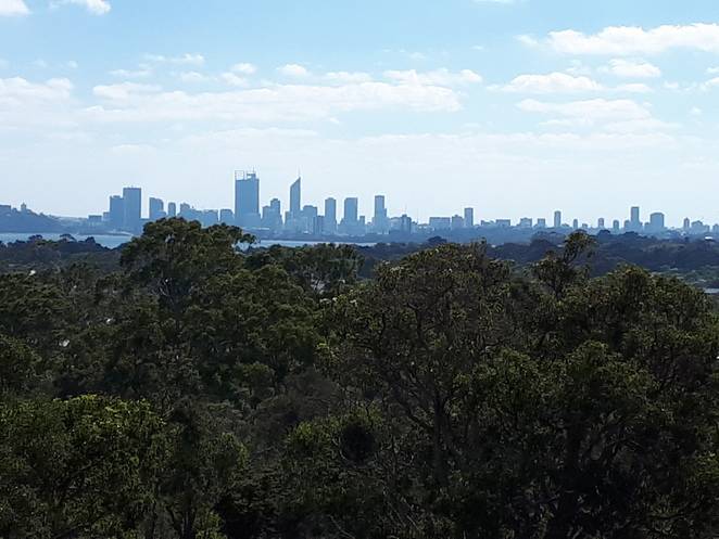 Wireless Hill Park, Perth City, views, reserve, Ardross, bush