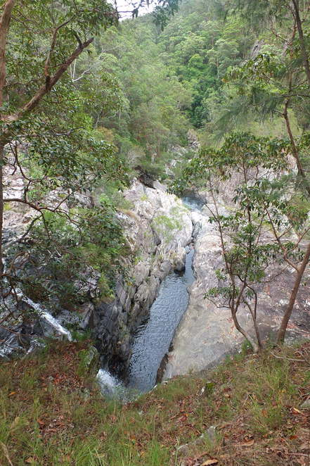 Booloumba Falls Walk, Conondale National Park, GPS, Conondale Range, high-clearance four-wheel drives, The Breadknife, crystal clear mountain water, swim at the base of the falls, three kilometre, 2 hours, camping facilities
