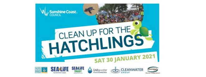 Clean Up for the Hatchlings 2021, turtle eggs, sea turtles, Loggerhead turtles, Green turtles, 8th annual clean up, Australian Marine Debris Initiative database, beach clean up, coastal locations, Coolum to Caloundra, free BBQ breakfast, guest speakers, prize draw, sun-safe clothing, closed shoes, single-use plastic-free event, reusable water bottles, Coolum, Point Arkwright, Marcoola, North Shore, Cotton Tree Park, Mooloolaba Beach, La Balsa Park, Buddina, Warana North, Warana South, Bokarina, Wurtulla, Currimundi, Moffat Beach, Shelly Beach, Happy Valley, Dicky Beach, FREE event, registration essential, Sunshine Coast Council, Unitywater, SEA LIFE Sunshine Coast Aquarium, Reef Check Australia, Cleanwater Group, SEA LIFE Trust