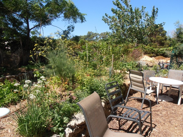 The cafe at the FERN Community Gardens offers a relaxed outdoor seating option.